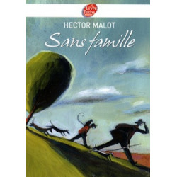 Sans famille.    Hector Malot