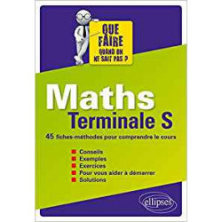 Maths Terminale S 45 Fiches...