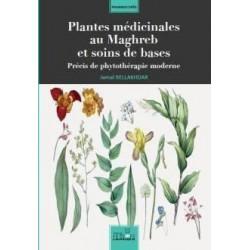 Plantes médicinales au...